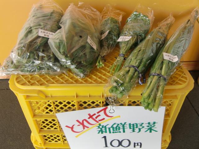 支援農家が栽培した新鮮野菜