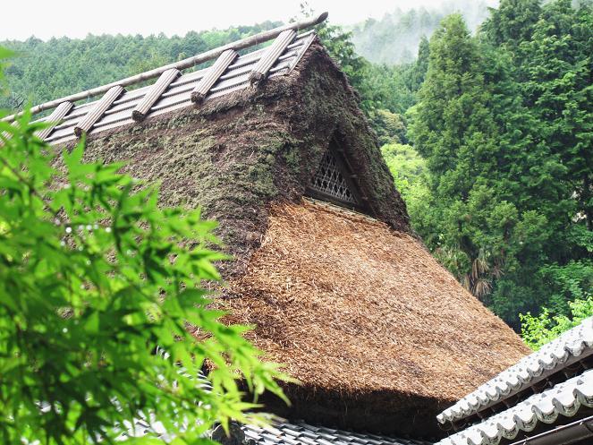 吹き替えを終えて美しくなった萱葺屋根