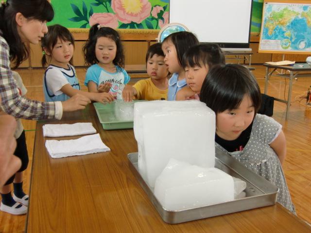 胸をときめかせ南極の氷の音を聴く児童ら