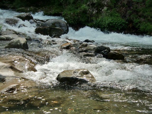 6月5日アユ解禁の清流・玉川峡