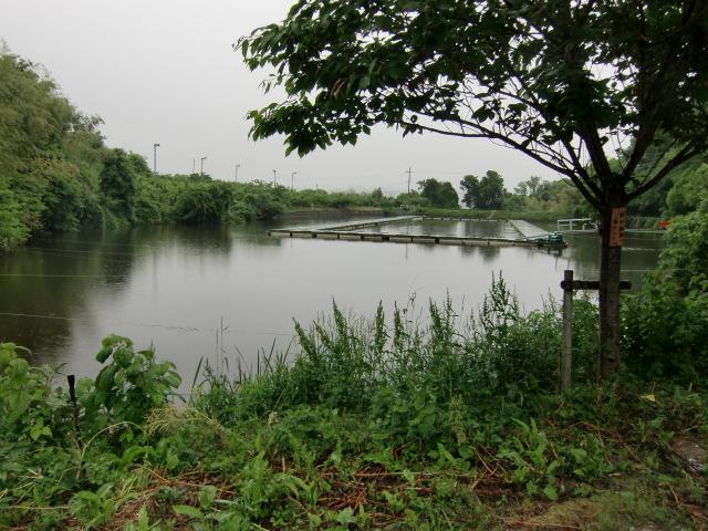 へラワンチャリティー大会が開かれる隠谷池
