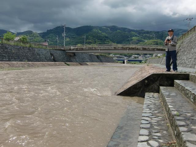 橋本川の松ヶ枝橋の手前で増水した光景を見る阪口さん(5月30日午前10時)