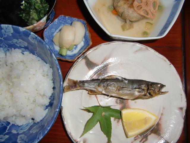 橋本市のカフェ・ギャラリー「藪椿」で料理になったアユの塩焼き