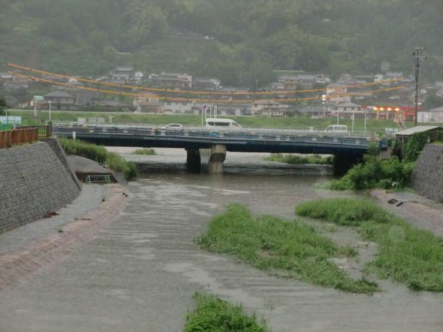 紀ノ川の水が松ヶ枝橋付近まで逆流する橋本川