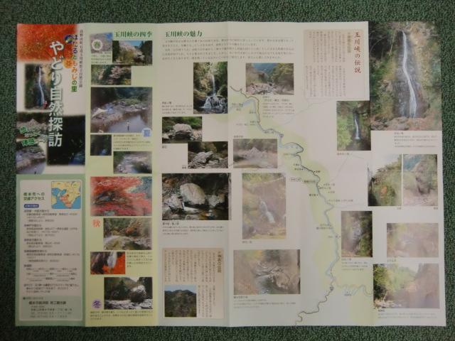 発行された「やどり自然探訪」マップ