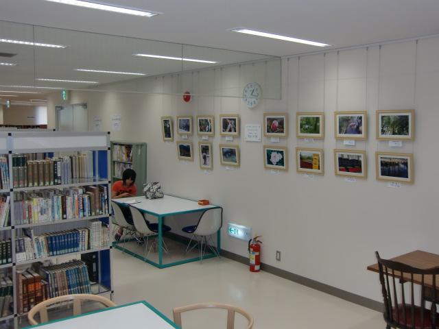 写真作品の発表の場が設けられた橋本市図書館