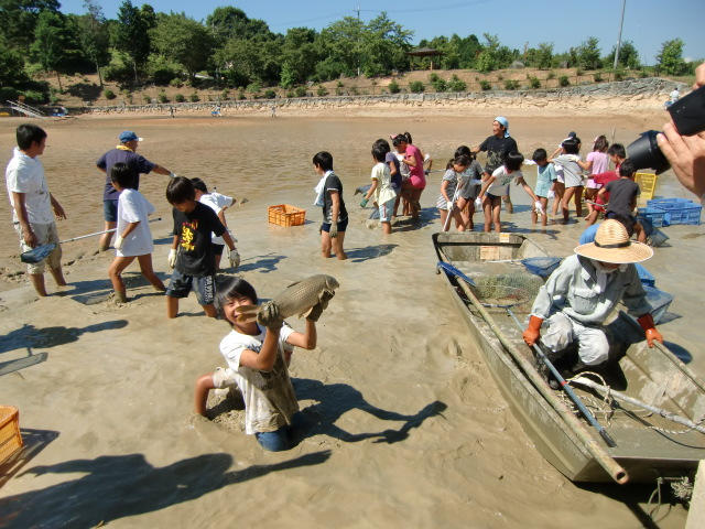 池の中で泥んこになりながら魚をつかまえる恋野小の子供たち