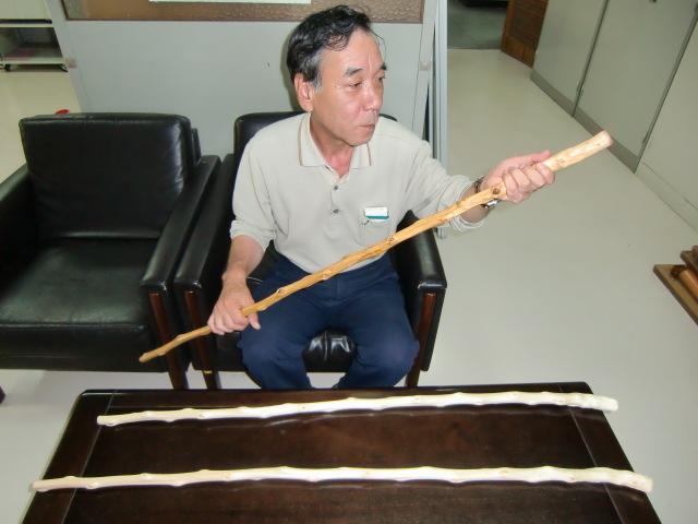 自作のアカザの杖を披露する山本さん