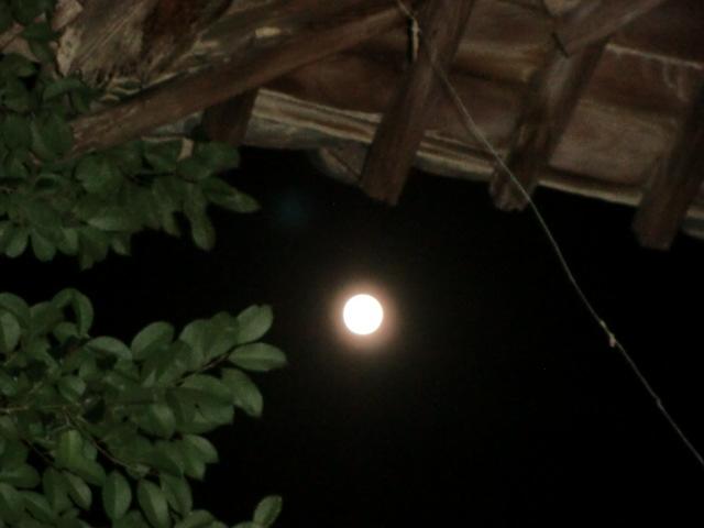 妙楽寺・山門から見た中秋の名月