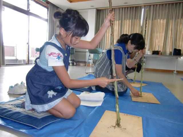 アカザの杖作りに挑戦する岡田かおりさん、柊子ちゃん母子