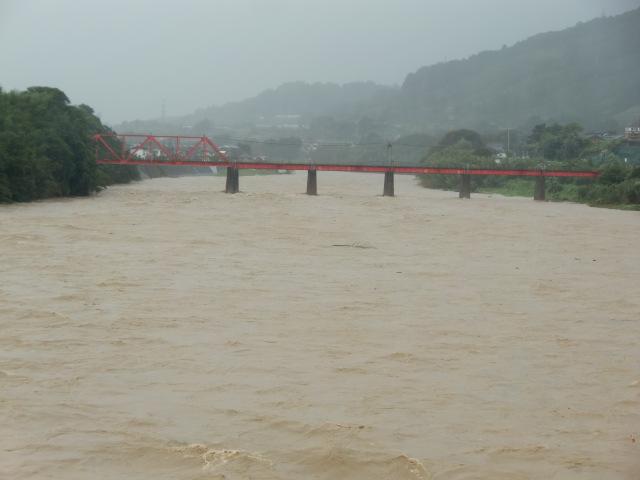 濁流の紀ノ川(上流に見えるのは南海高野線の鉄橋)