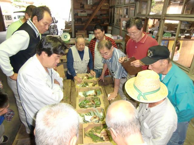 橋本共栄青果市場でセリにかけられるマツタケ