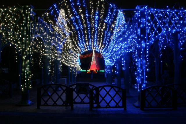 2011/12/01(木) 17:00~ 寺ヶ池公園イルミネーション
