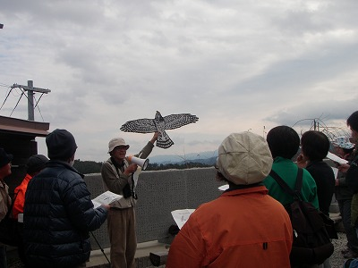 絶景かな!国城山ハイク~野鳥の話、畑ごんぼ掘り