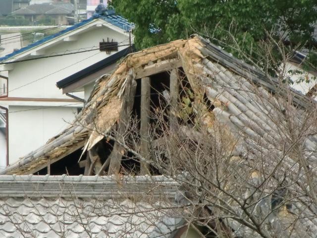屋根が崩落した妙楽寺本堂