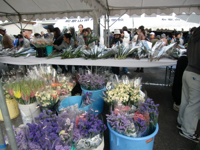 大勢の花ファンが詰めかけた〝農大祭〟の花売り場に