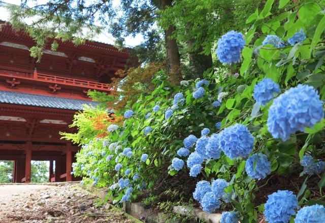 <お知らせ>犬飼山轉法輪寺で写真展や津軽三味線