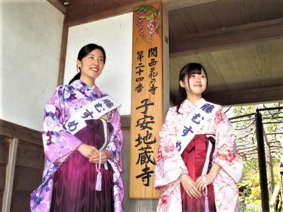 藤むすめ2人決定♪子安地蔵寺~藤の見頃4月末~?