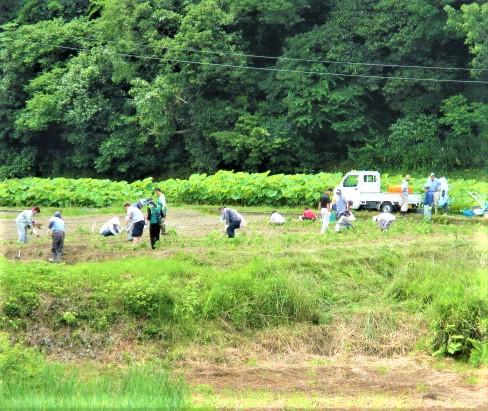 真土万葉の里に環境賞♪生ごみ堆肥で花栽培や里保全