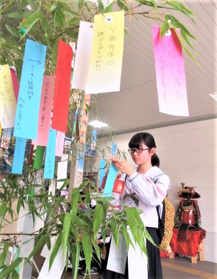 星に願いを♪橋本駅に七夕飾り~乗降客ら短冊吊るす