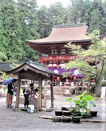 西行偲び献香・献茶式♪9月9日・丹生都比売神社