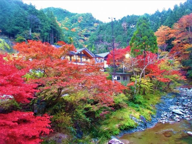 玉川峡、紅葉鮮やか♪関西の奥座敷・やどり温泉付近