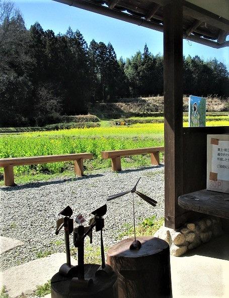 菜の花に心ほっと♪真土万葉の里~踊り子の竹細工も