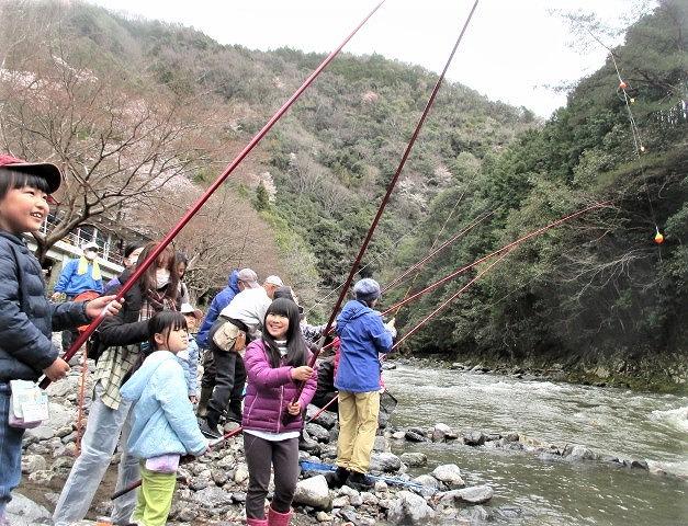 アマゴ釣り♪子供ら大喜び~桜満開♡雨後の玉川峡