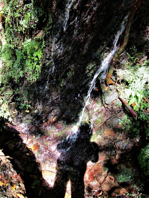 小滝♡人影に水しぶき!橋本・玉川峡谷・秋深まる