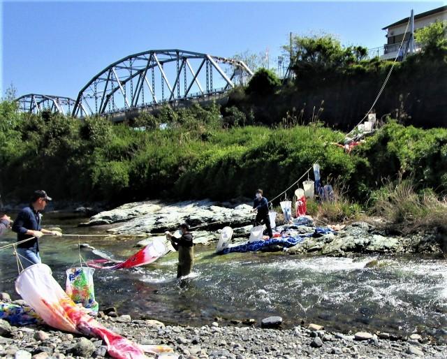 鯉幟100匹♡春風遊泳♪九度山・紀伊丹生川の空