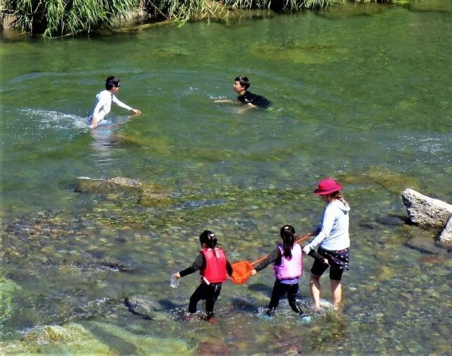 夏日の川遊び楽しむ♡九度山・丹生川〜梅雨の中休み